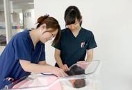 4東(産婦人科・女性)病棟