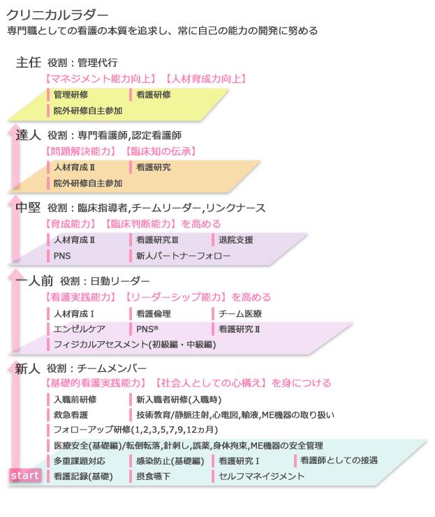 クリニカルラダー 表